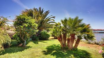 Nice studio apartment with sea view and a beautiful lawn, 12