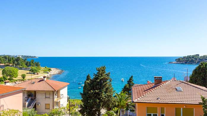 Apartment in the attic with an unbeatable sea view in Pula, 1