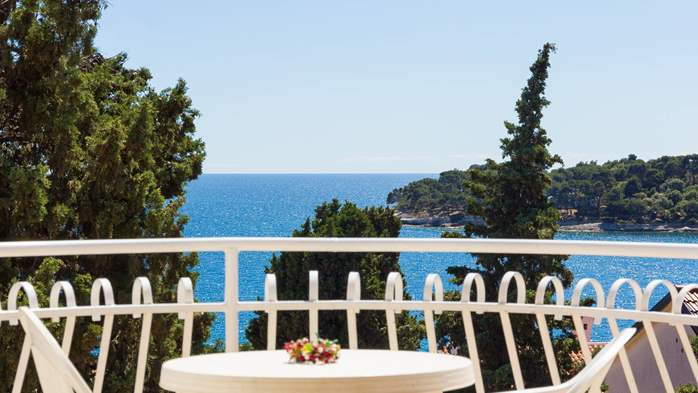 Two bedroom apartment in Pula with magnificent sea view, 1