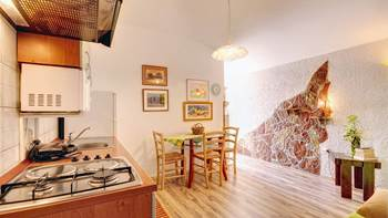 Comfortable apartment for 4 people in Pula,free WiFi, shared pool, 5