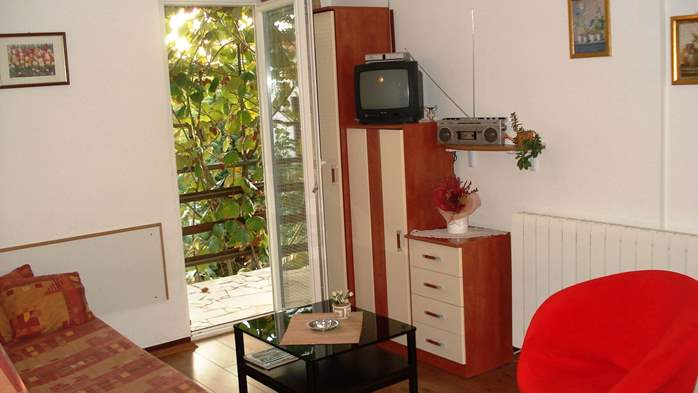 Apartment on the 1st floor for 2-4 persons, free WiFi, SAT-TV, 1