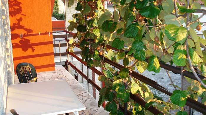 Apartment on the 1st floor for 2-4 persons, free WiFi, SAT-TV, 7