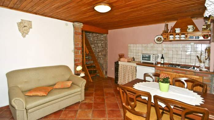 Istrian house in wood and stone on two floors for 4 persons, 22